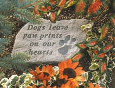Dogs leave paw prints on our hearts memorial stone Remember a special four legged friend with this everlasting garden stone. www.sympathysolutions.com