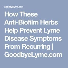 How These Anti-Biofilm Herbs Help Prevent Lyme Disease Symptoms From Recurring | GoodbyeLyme.com
