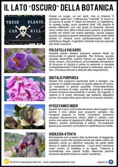 """Il lato """"oscuro"""" della botanica"""
