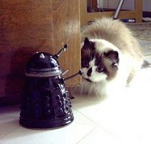 I will exterminate you first!