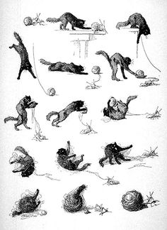 Théophile Alexandre Steinlen (1859-1923) - Cat and wool