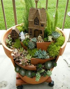 Cute succulent garden.