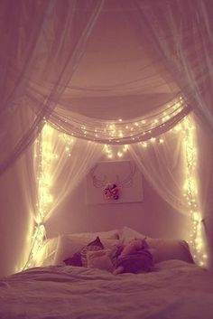 I want to make this canopy bed with the string lights
