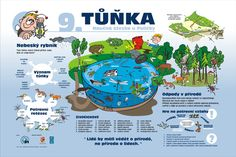 Earth Day, Preschool, Science, Map, Education, Comics, Kid Garden, Location Map, Kindergarten