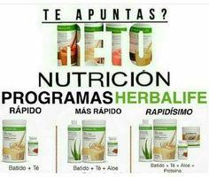 Herbalife Plan, Herbalife Shake Recipes, Herbalife Nutrition, Health And Nutrition, Herbalife Distributor, Herbalism, Fitness, Healthy Living, Club