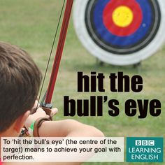 Expression: Hit the bull's eye