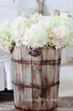 .white hydrangea in old bucket