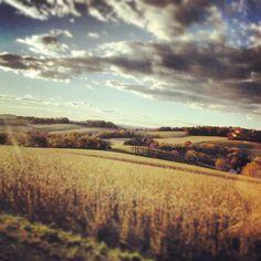fall day #enixphotos