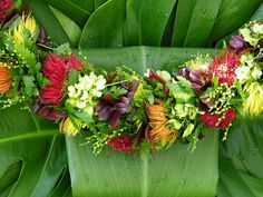 Oahu hosts the state's largest May Day event. No matter what day May 1 falls on, the Lei Day Celebration takes place at Queen Kapiolani Park in Waikiki. Hawaiian Flowers, Hawaiian Leis, Plumeria Flowers, Stuff To Do, Things To Do, Haku, Flower Lei, Graduation Leis, Fleur Design