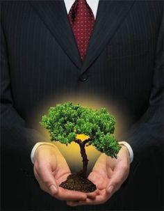 El término sustentabilidad refiere al equilibrio existente entre una especie con los recursos del entorno al cual pertenece