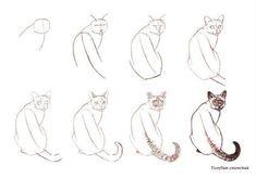 zeichnen lernen – Lernen Sie, Katzen ziehen. Diskussion über LiveInternet Russisch Service Online Tagebücher – vol 4481   Fashion & Bilder