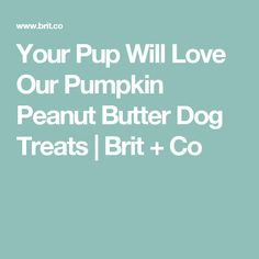 Your Pup Will Love Our Pumpkin Peanut Butter Dog Treats | Brit + Co
