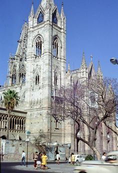 Barcelona Cathedral, History, Building, Travel, Temples, Guadalajara, Open Arms, Antigua, Cities