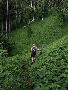 Walk the Kokoda Trail, Papua New Guinea