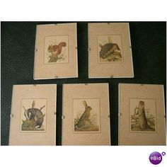 Oxenham Animal Stamps ~ magazine prints in clip-frames ~ for Dyfi Osprey Project Listing in the Other,Great Britain,Stamps Category on eBid United Kingdom House Clearance, United Kingdom, Kingdom 3, Project List, Red Squirrel, Auction Items, Good Cause, Print Magazine, Charity