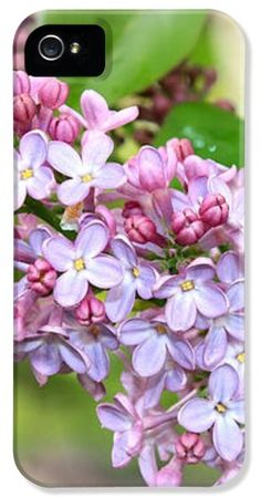 """""""Lovely Purple Lilacs"""" iPhone case by Carol Groenen #iPhonecases #iPhonecase #lilacs #flowers  #spring"""