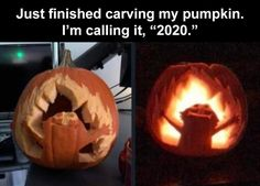 The Funniest Memes Of The Week (Part 1) – 51 Pics Funny Animal Memes, Funny Relatable Memes, Funny Tweets, Cartoon Memes, Pumpkin Ideas, Funny Twitter Posts, Funny Posts, Extremely Funny Jokes, Self Confidence