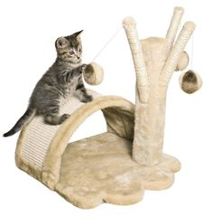 Special Section Ancol Lulu Cat Kitten Feeding Dish Fast Del Twin And Mat Set Single