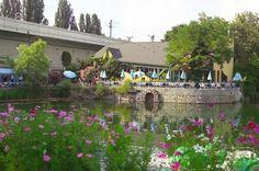 ▸ Die schönsten Lokale am Wasser in Wien Stuff To Do, Things To Do, Vienna Austria, Holiday Travel, Dolores Park, Plants, Holidays, Photos, Environment