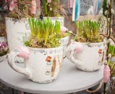 Pastel, Mugs, Spring, Tableware, Plants, Cake, Dinnerware, Tumblers, Tablewares