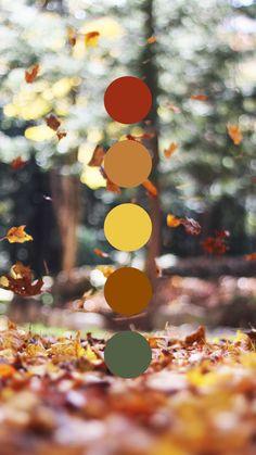 Feeling cozy & fallish🍂🍁 Fall leaves color palette designed by Amari Creative. Palette Art, Nature Color Palette, Colour Pallette, Color Palate, Colour Schemes, Color Trends, Autumn Leaf Color, Color Psychology, Corporate Design