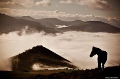 Sublime atmospheric mountain range with clouds silhouetting a horse against the light.