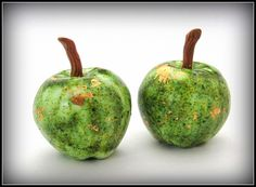 Organic Apples by Debbie Crothers