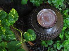 Antique jar in the garden ...