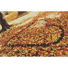 """#christmas #halloween #xmas #winter #fall #autumn #tumblr #2015 #like4like #spam4spam #follow4follow #christmastime #christmastree #cold #pumpkin #trickortreat #sweaters #love #seasonal #holidays #merrychristmas #happyhalloween"" Photo taken by @pumpkinsnow_ on Instagram, pinned via the InstaPin iOS App! http://www.instapinapp.com (10/03/2015)"