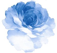 watercolor rose - can be used on some many things