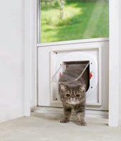 Katzenklappe Einbau Homes, Animals, Closets, Gatos, Landscape, Houses, Animales, Animaux, Home