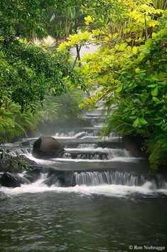 Es aguas termales. Está en Tabacon Hot Springs Resort & Spa, Costa Rica. puedes relajarte