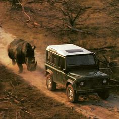 Dogs chase cars everywhere in the world... But in Africa we have Rhinos that chase our Land Rovers #landrover #landroverdefender #landyworx #defender #defender90 #offroad #4wd #4x4 #safari #adventure #expedition #rhino #savetherhino #africa #southafrica #travel