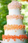Orange and white wedding cake ~ beautiful.