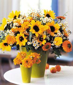Sonnenblumen, Ringelblumen und Tagetes via Living at home / Photography by Anke Schütz