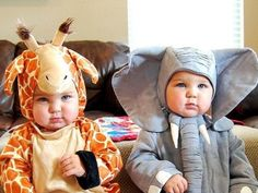 7 Tips for Raising Fraternal Twins That You Will Love...