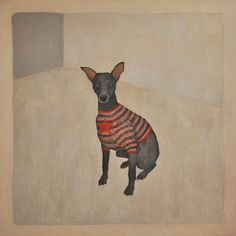 Superstar dog! In a sweater, no less. $132