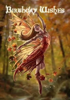 Birthday fairy