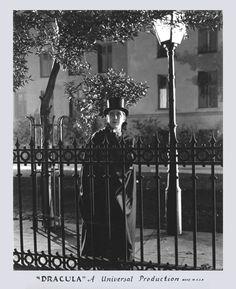 Bela Lugosi as Dracula Cool Monsters, Famous Monsters, Classic Monsters, Creature Movie, Monster Vampire, Looks Dark, Movie Shots, Horror House, Vintage Horror
