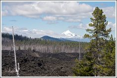 A view of Mt. Jefferson north of the lava fields Sisters Oregon, Visit Oregon, State Of Oregon, Short Trip, Hot Springs, Fourth Of July, Lava, Fields, Places To Go