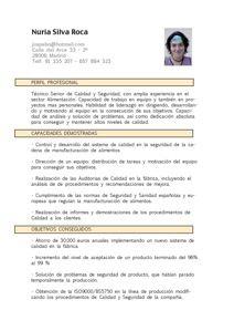 Modelo Currículum Vitae Funcional