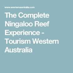 The Complete Ningaloo Reef Experience - Tourism Western Australia