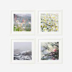 Wall decor Sale  Nature Photography Print Set of  4 by gonulk #photography #homedecor #walldecor