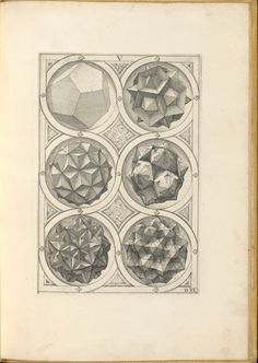 Perspectiva Corporum Regularium (Perspective of regular solids), created in 1568 by German goldsmith and printmaker Wenzel Jamnitzer (1508–1585), is a study in shapes inspired by the five Platonic …