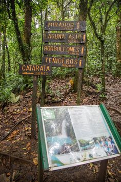 Hiking Tenorio Volcano National Park to see Rio Celeste. Read our guide for more tips: http://mytanfeet.com/activities/tips-visiting-rio-celeste/