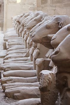 Alley of ram-headed sphinxes at the first pylon of the temple of Amun-Ra at Karnak, Temple of Karnak, Luxor, Egypt