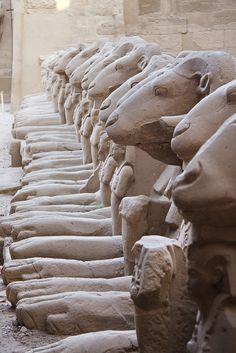 Allée des Sphinx à tête de bélier au premier pylône du temple d'Amon-Rê à Karnak