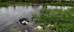 Paraguay se propone disminuir la contaminación y aumentar el suministro de agua - http://verdenoticias.org/index.php/blog-noticias-contaminacion/186-paraguay-se-propone-disminuir-la-contaminacion-y-aumentar-el-suministro-de-agua