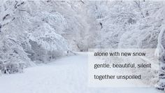 alone with new snow Buddhist Wisdom, Winter Songs, Dalai Lama, Haiku, Winter Wonderland, Poems, Spirituality, Felt, Snow