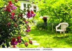 Stepping stones through a garden to a home